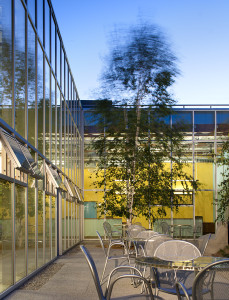 Glass-walled courtyard