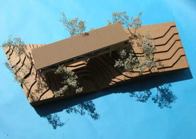 View of the Bridge Alternative study model from above and to the east. The model demonstrates that light falls on the entire area under the building for at least part of the time over the course of most days for the entire year. This would therefore support plant life and the rehabilitation of the stream banks, an ambition of the client who was trained as a landscape architect.