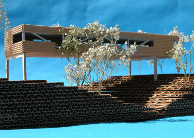 Eye level view of the study model looking form the stream bank.